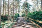 Vianenweg Holten