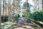 contact en route Bed & Boshuisje, Vianenweg Holten