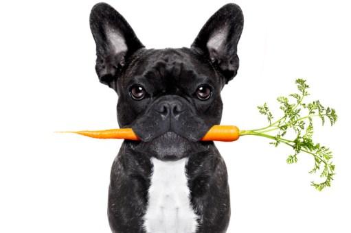 Le fait de mâcher de façon régulière permet une meilleure digestion des aliments que l'on mange. Adieu les problèmes d'intestins!