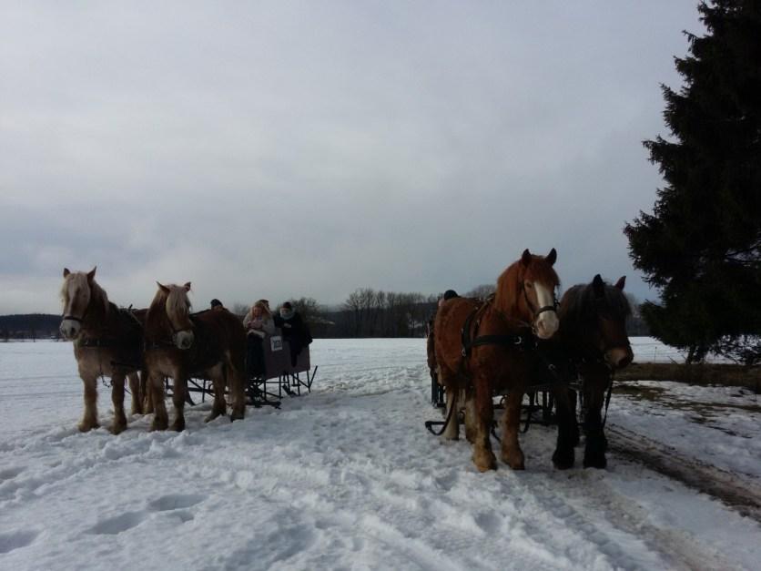 Actie in de sneeuw (12)