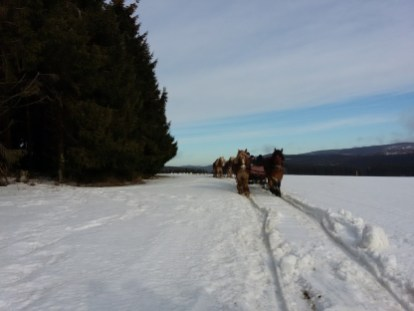 Actie in de sneeuw (14)