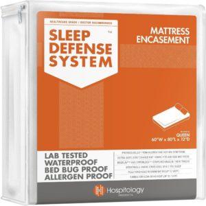 best bed bug mattress protectors