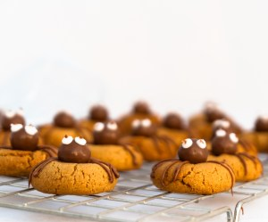 PeanutButterSpiderBiscuits_All