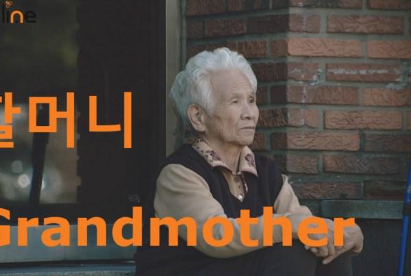 grandmother in korean