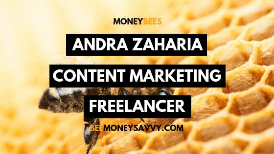 Money Bees - Andra Zaharia