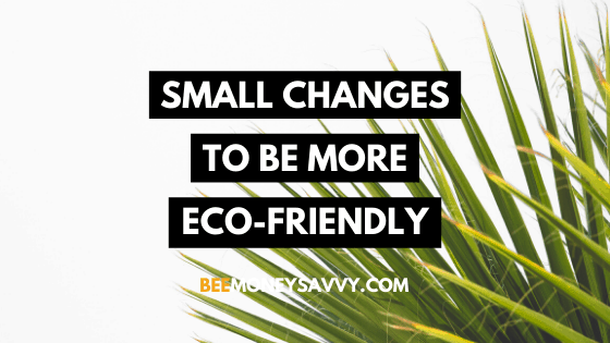 Small Changes To Be More Eco-Friendly