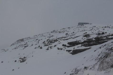 Peyto Hut