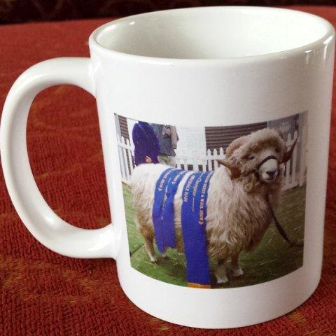 Beersheba Farm Merchandise
