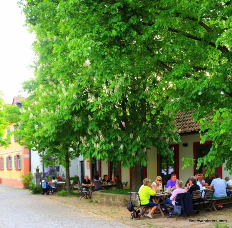 leafy biergarten