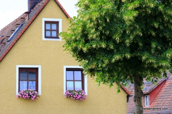 house with flowers on window sills