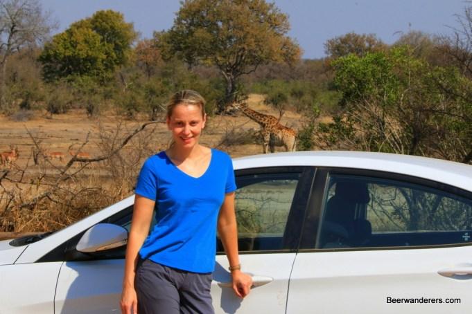 blond car giraffe