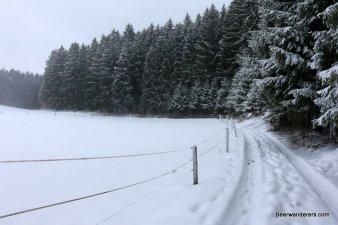 open snowy trail
