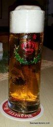 golden beer in tall mug