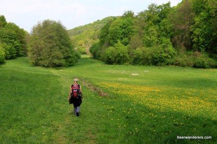 woman hiker in meadow