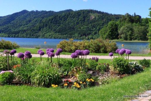 flower garden on lake