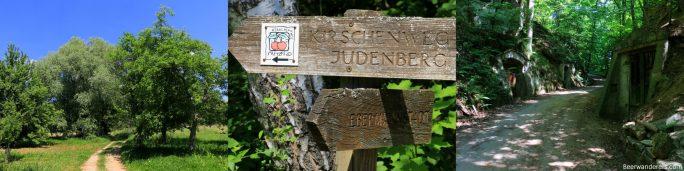 path through trees, hiking sign, lush bierkeller area