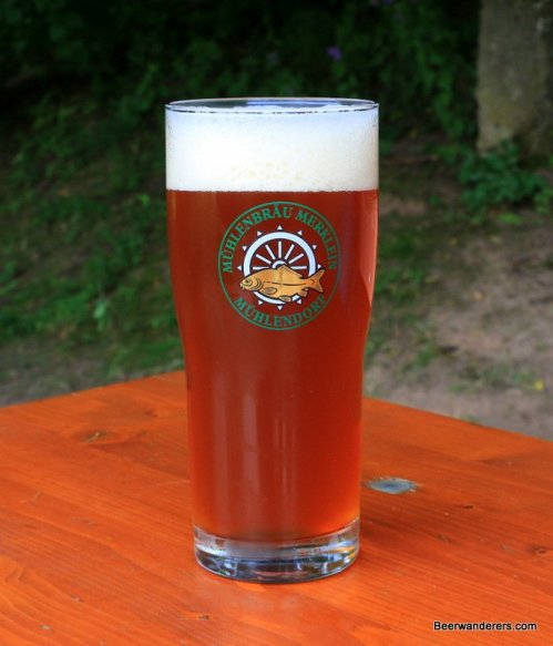 unfiltered amber beer in logo glass