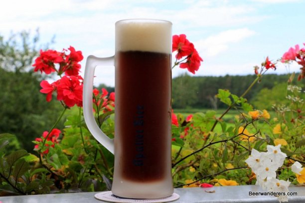 dark beer in frosty looking mug with logo