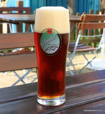 chestnut beer with big head in logo glass