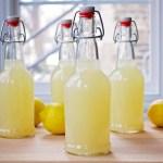 lacto-fermented-lemonade
