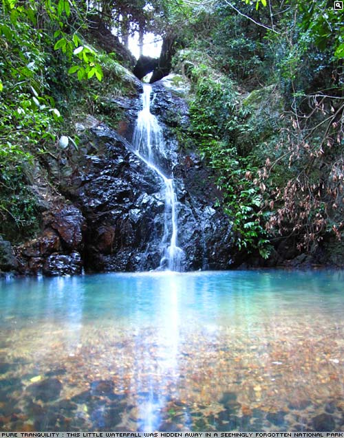 Hidden waterfall, Byron Bay hinterland