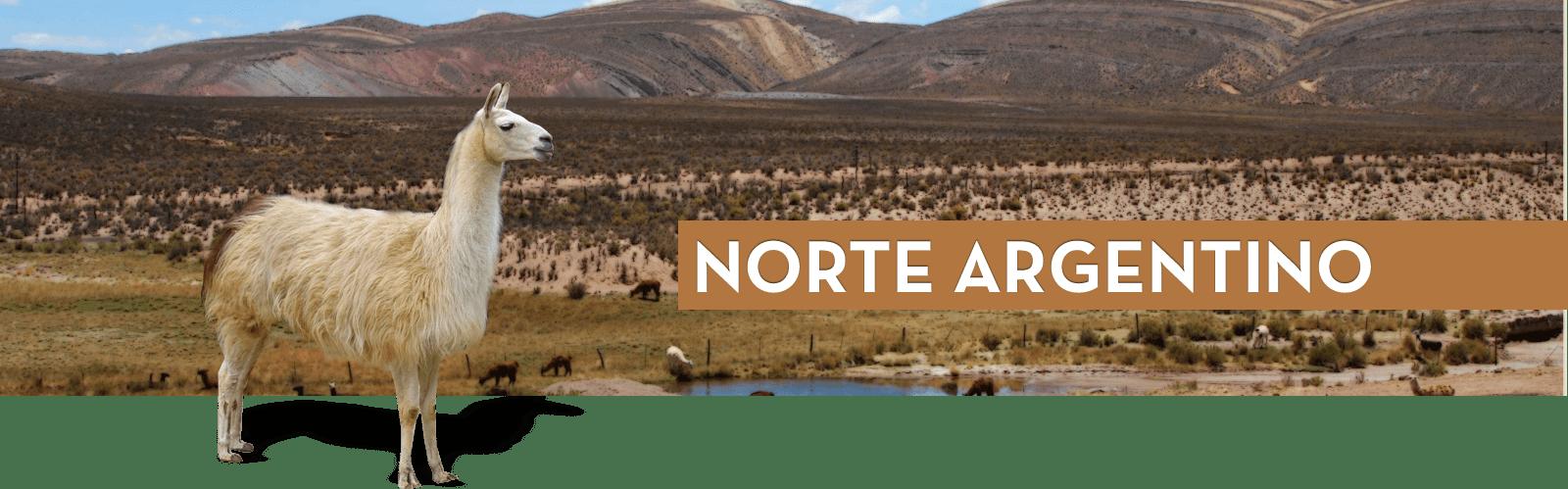 Resultado de imagen para Norte  Argentino png