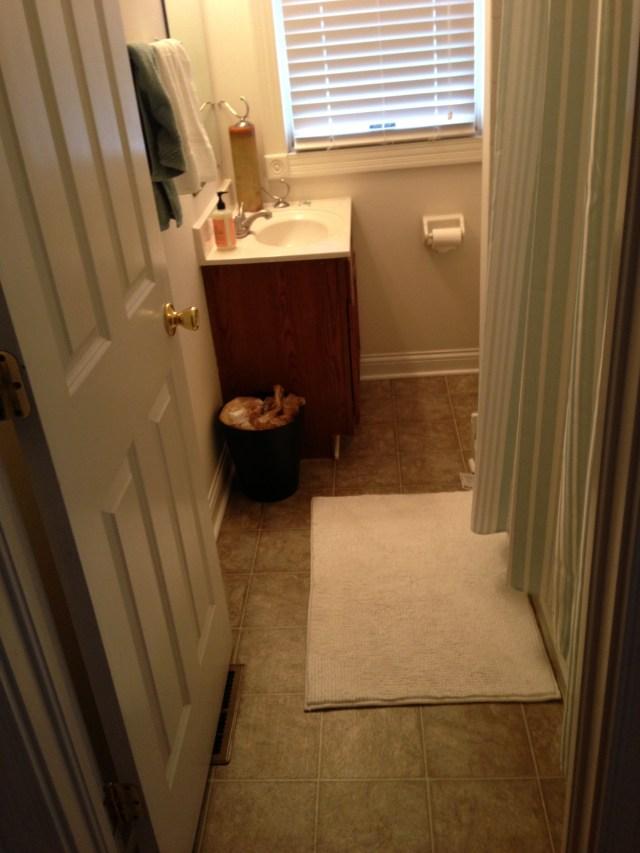 Guest Bathroom - Before