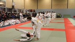 A good demonstration of the Yoko Ukemi or Side Breakfall