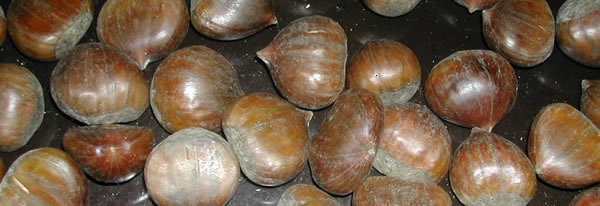 castagne - chestnuts