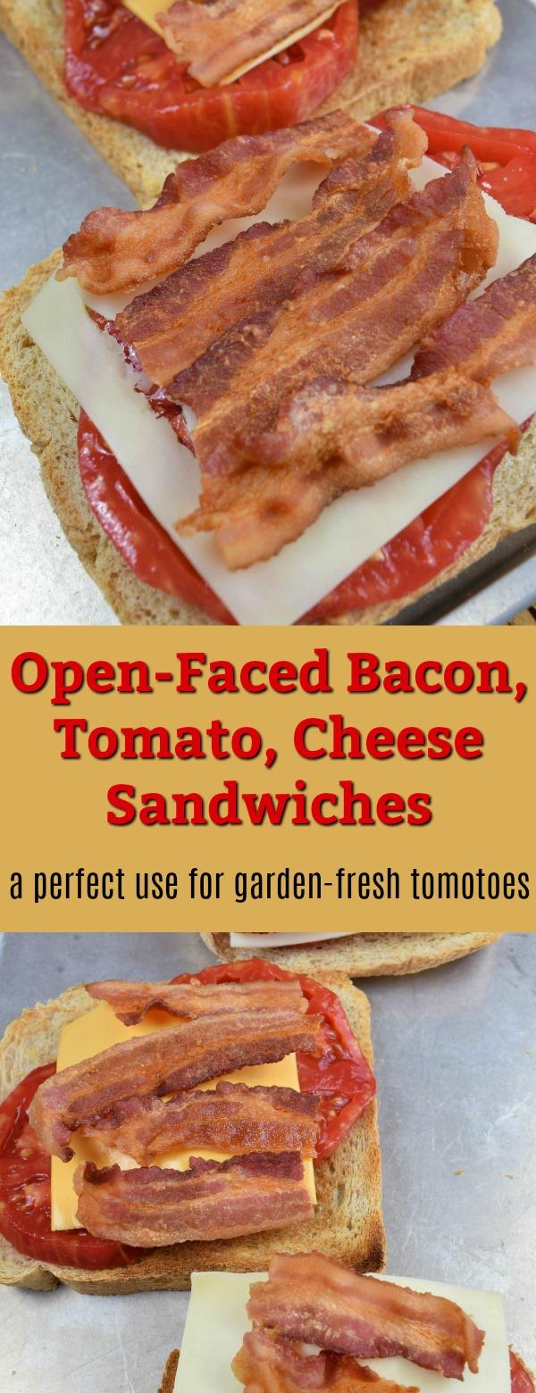 bacon, tomato, cheese sandwich