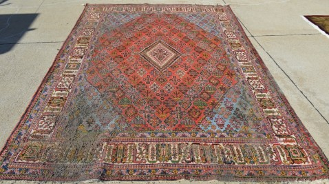 is your persian rug dirty or does it have moth damage