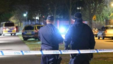 صورة قصور كبير في تحقيق الشرطة بجرائم خطيرة على منصات الألعاب