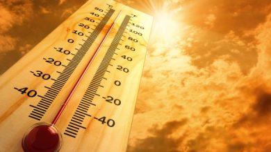 صورة تحذير من ارتفاع غير مسبوق لدرجات الحرارة في السويد