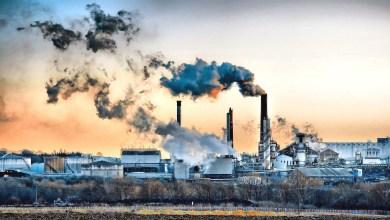 صورة مدخل لدراسة مشكلة التلوث البيئي