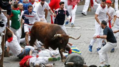 صورة المملكة السعودية تسعى لتنظيم مصارعة الثيران على الطريقة الإسبانية