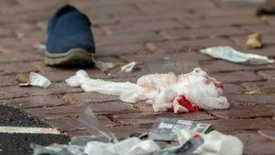 صورة طفلة في الخامسة إحد ضحايا مجزرة المسجد في نيوزلندا