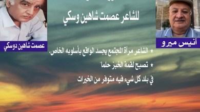 صورة الكاتب أنيس ميرو يكتب عن قصيدة خروف محفوف للشاعرعصمت شاهين دوسكي
