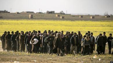"""صورة محققة أممية """"توبخ"""" فرنسا بسبب نقل 7 جهاديين إلى العراق"""