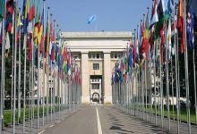 صورة الأمم المتحدة تعتمد 10 ماي يوما عالميا لشجرة الأركان المباركة.