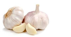 garlic cures toothache