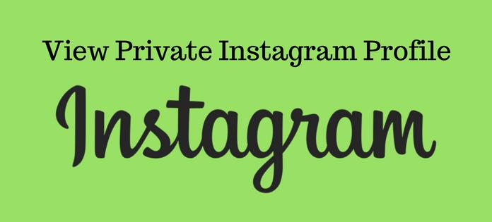 download instagram private profile photos