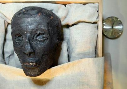 Stars Protect Egyptian Heritage