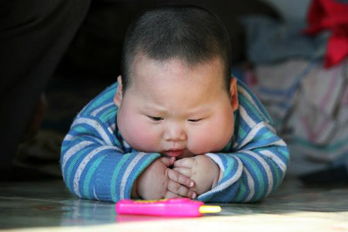 Obese Chinese Baby
