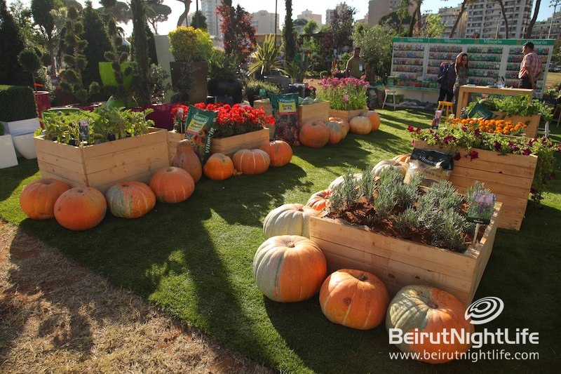 Celebrating the 10th Garden Show and Spring Festival