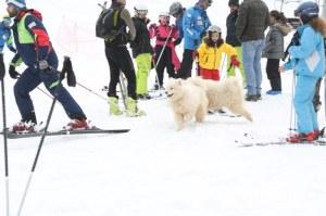 Lebanon FINALLY Gets to Ski!
