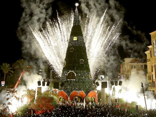 The Best Christmas Trees in the World