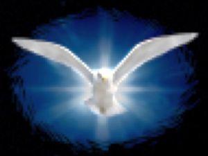 HOLY SPIRIT DOVE with LIGHT