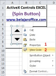 View Code Spin Button ActiveX