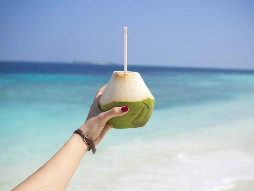 Maldives COMO Hotel Cocoa Island coconut