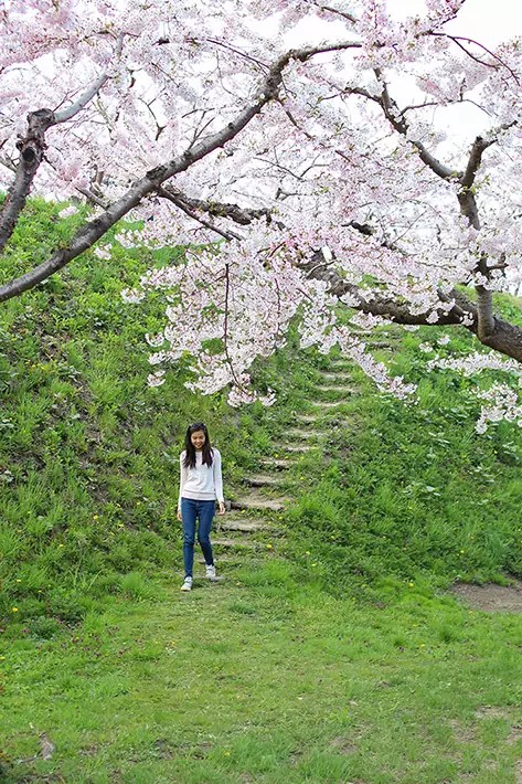 hakodate fort gorykaku park girl sakura, hakodate itinerary, things to do in hakodate, what to do in hakodate, hakodate must eat